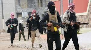 Iraq Crisis, US Military